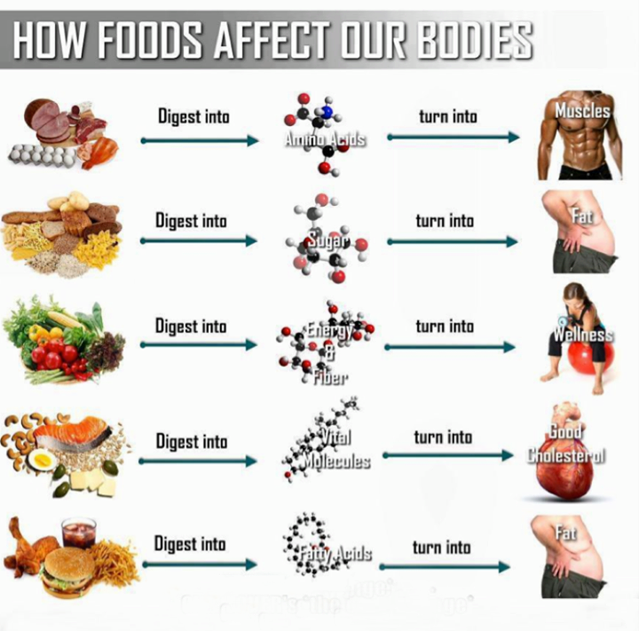 How food affect our bodies