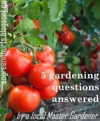 http://sogreenithurts.blogspot.ca/2015/04/5-gardening-questions-answered-by-local.html