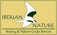 Iberian Nature - Birding & Nature Guide Services