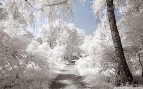 Белым бело.