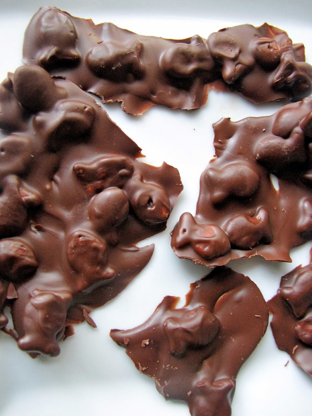 The Choco-Aholic: Chocolate Covered Goldfish