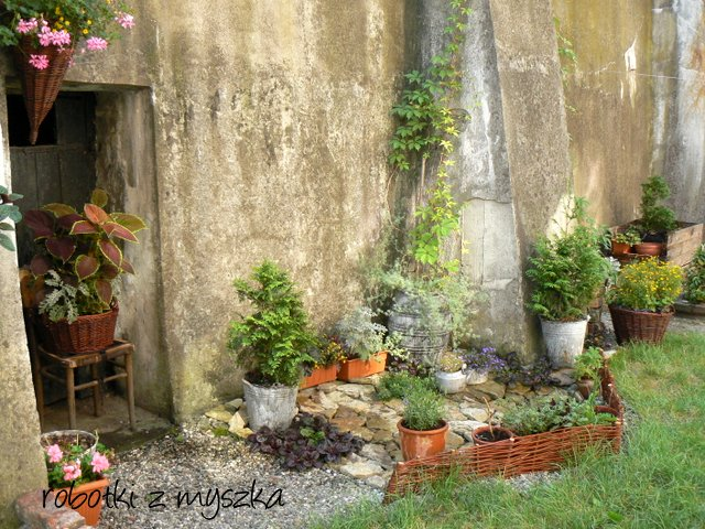 http://2.bp.blogspot.com/--z05qxJJTYQ/T_iVWZdwINI/AAAAAAAABVk/-C61JkKKoAA/s1600/P1050755.JPG