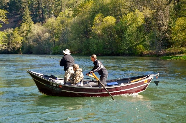 Fishing the rogue steelhead salmon fishing guides for Oregon fishing license price