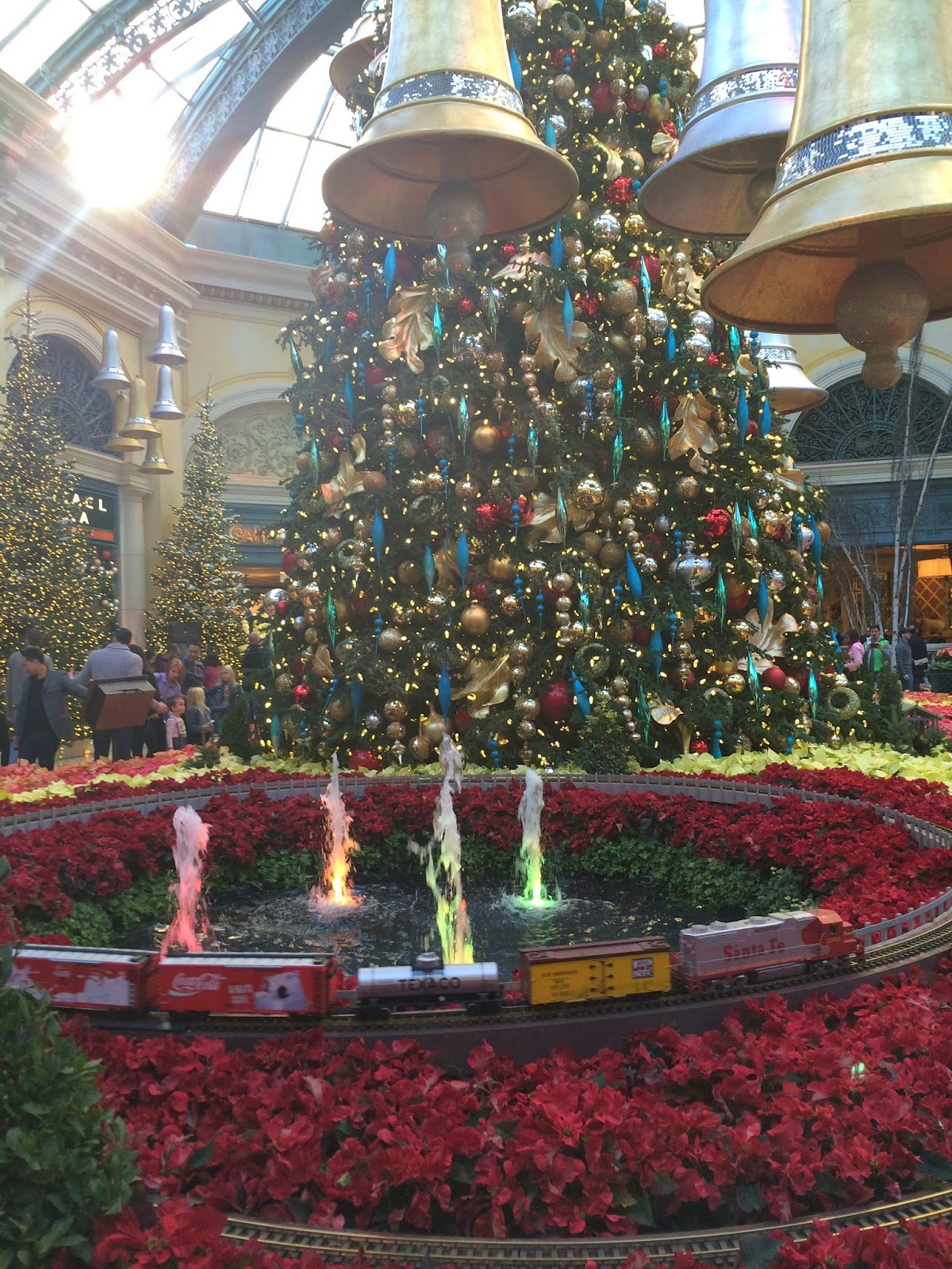 LAS VEGAS DAZE: Photos of Bellagio Christmas Conservatory ...