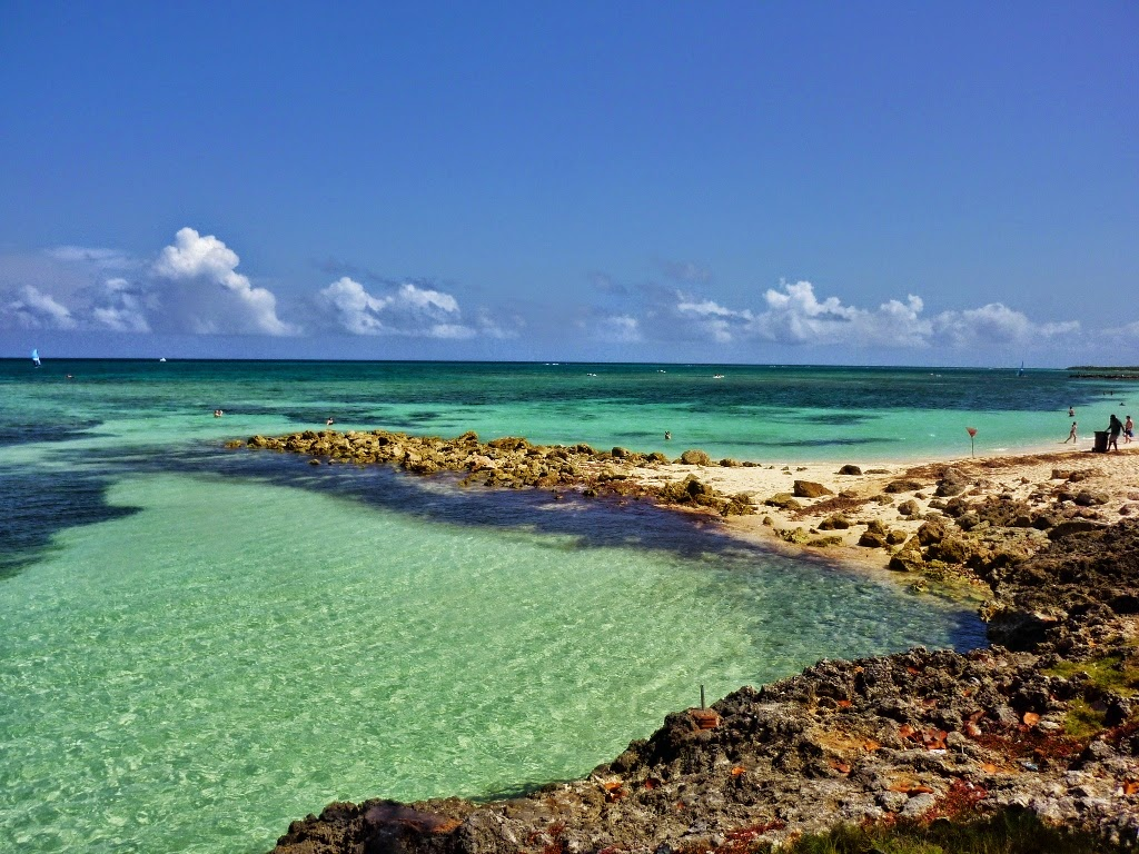 coral reef essay coral reefs mrs franks esl corals and coral reefs  travel the caribbean blog travel photo essay part holguin has approximately 50 picturesque beaches that cover coral reef essay pixels
