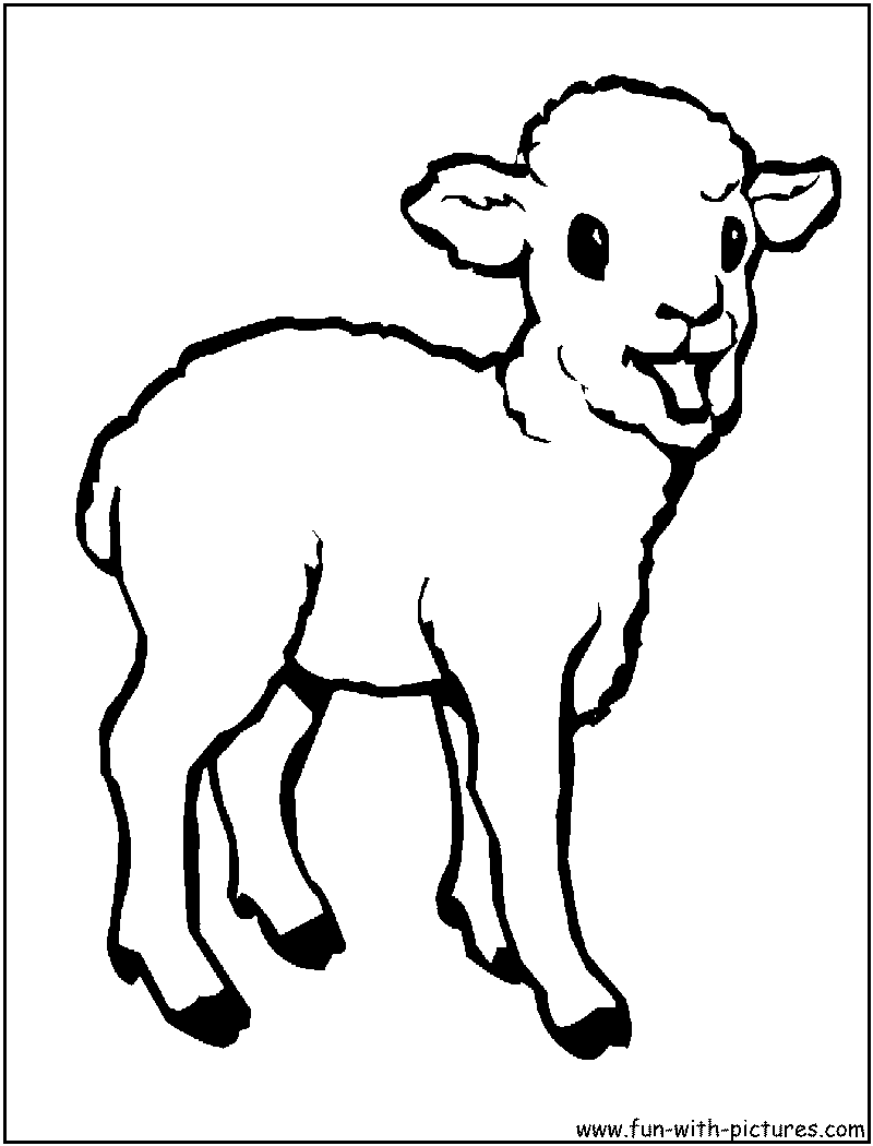 Baby animais para colorir for Baby animal coloring page