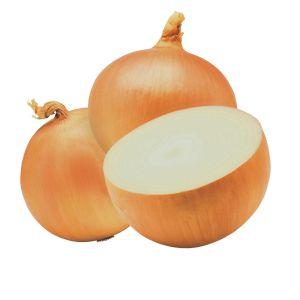 cebolas