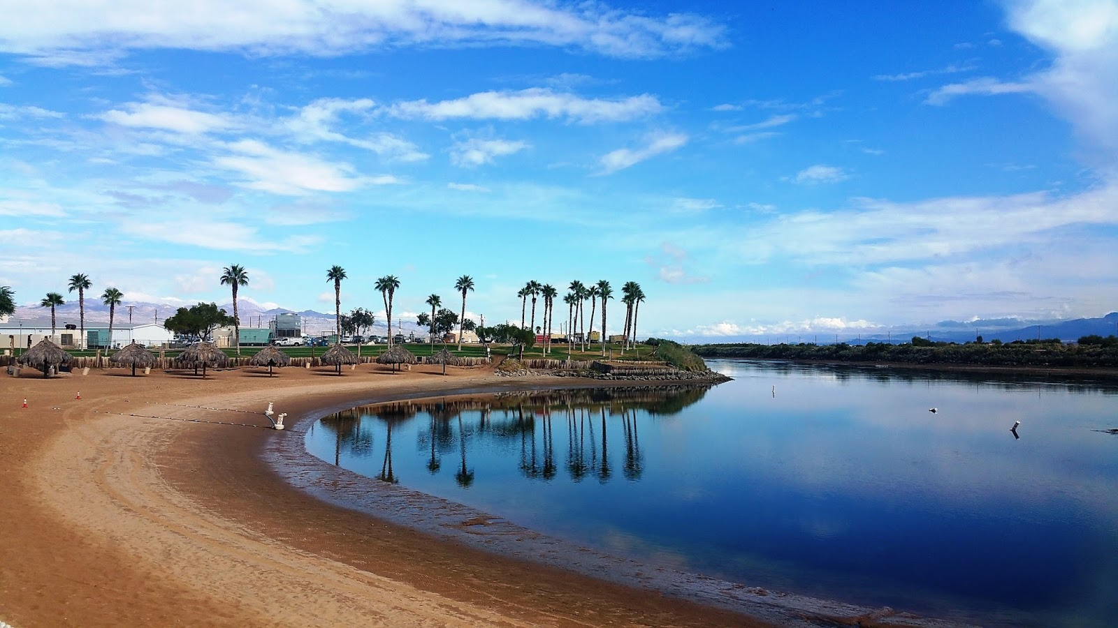 River palms resort casino laughlin nv gambling odds and evens