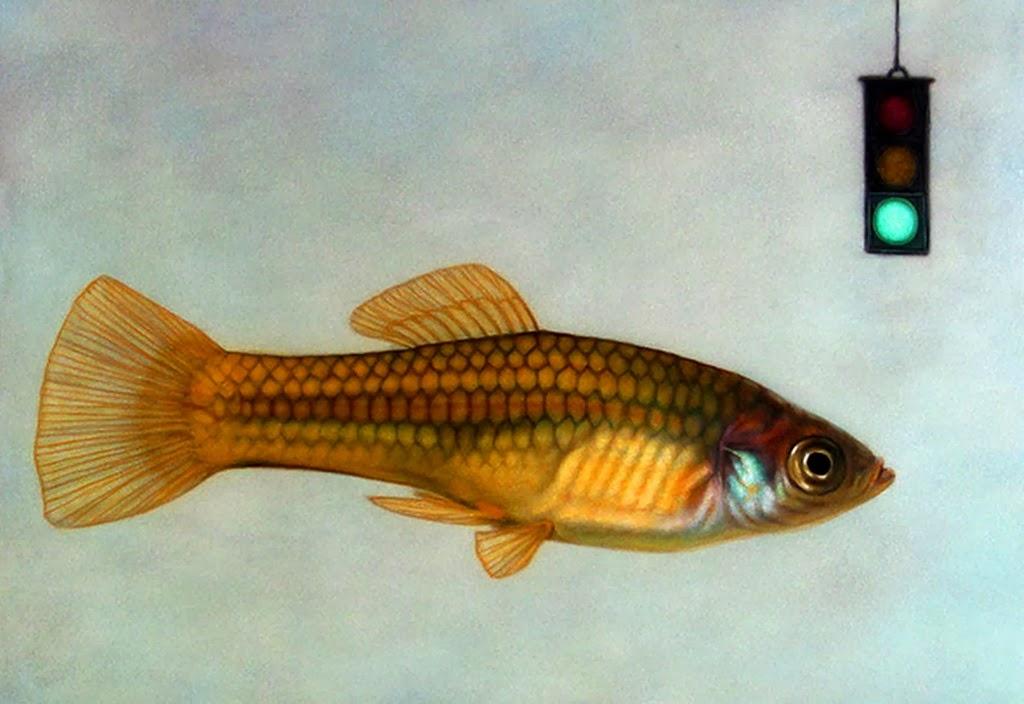 Im genes arte pinturas galer a de pinturas decorativas - Cuadros con peces ...