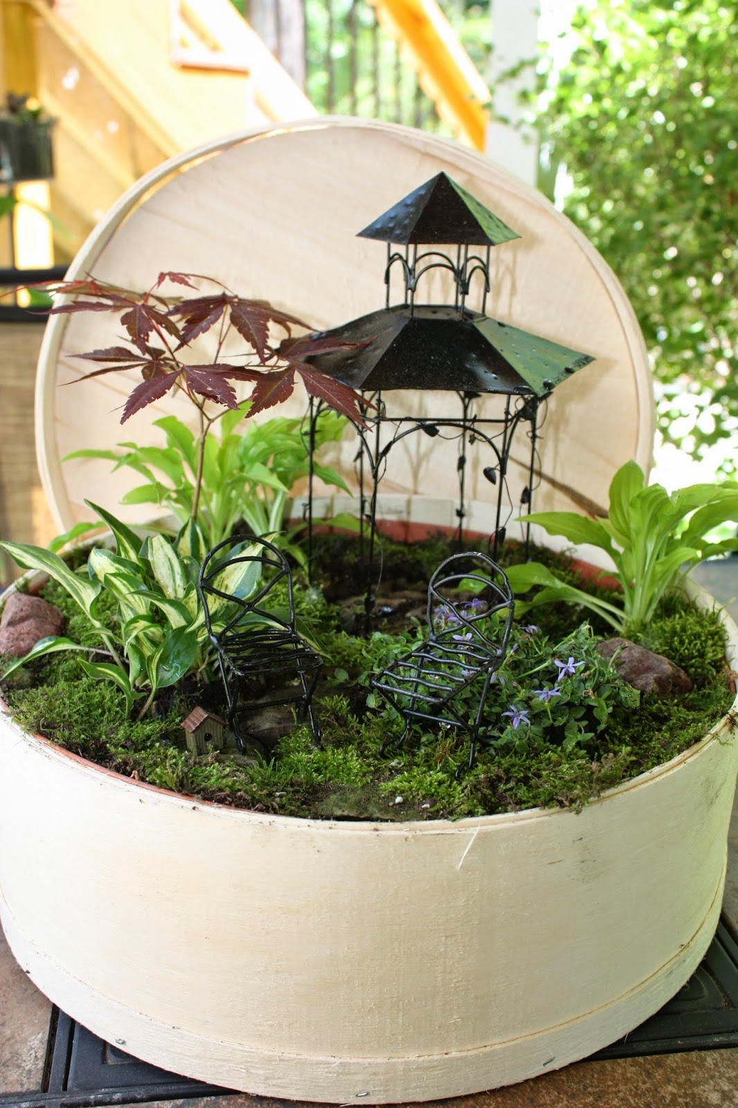 Garden thyme with the creative gardener creating fairy gardens or miniature gardens - Fairy garden containers for sale ...