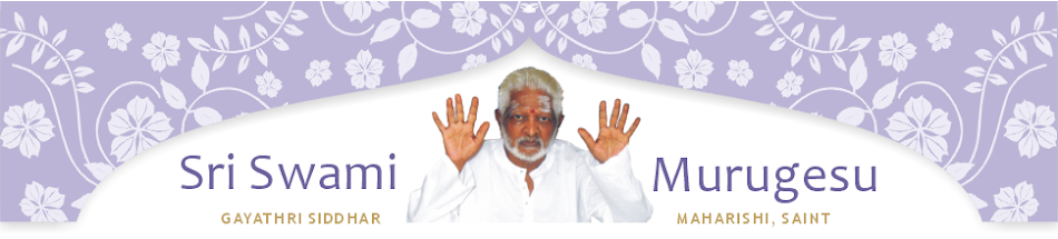 Swami RK Murugesu