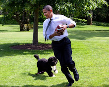 Barack Obama's Dog Food