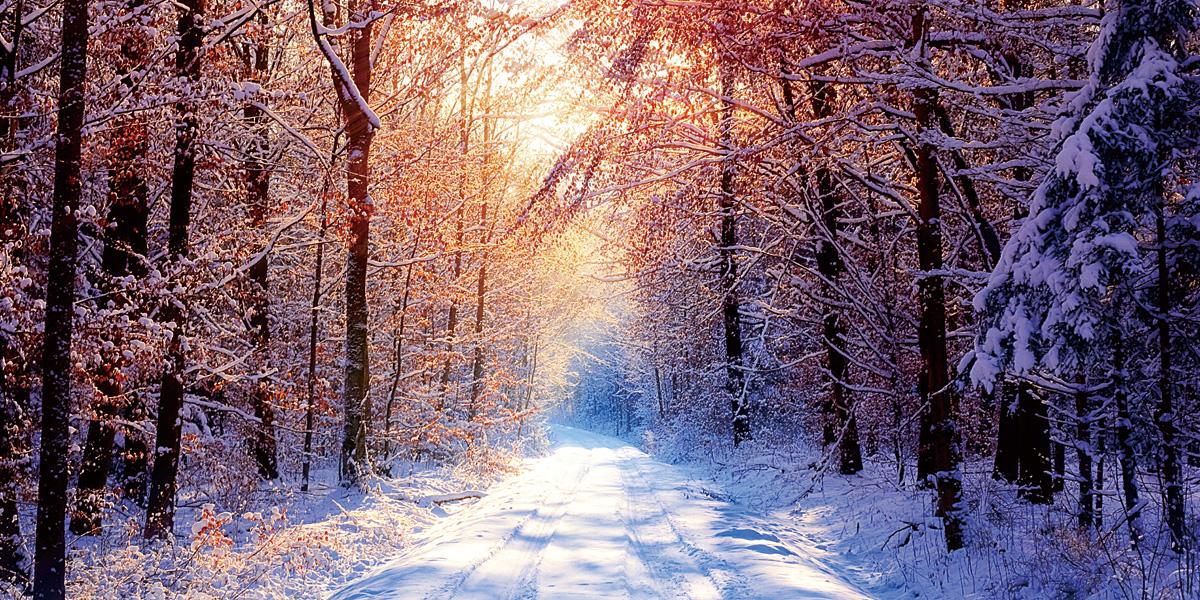 Snow Landscapes l 300+ Muhteşem HD Twitter Kapak Fotoğrafları