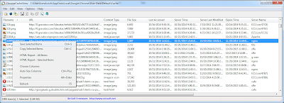 See the Content of Google Chrome Cache Folder