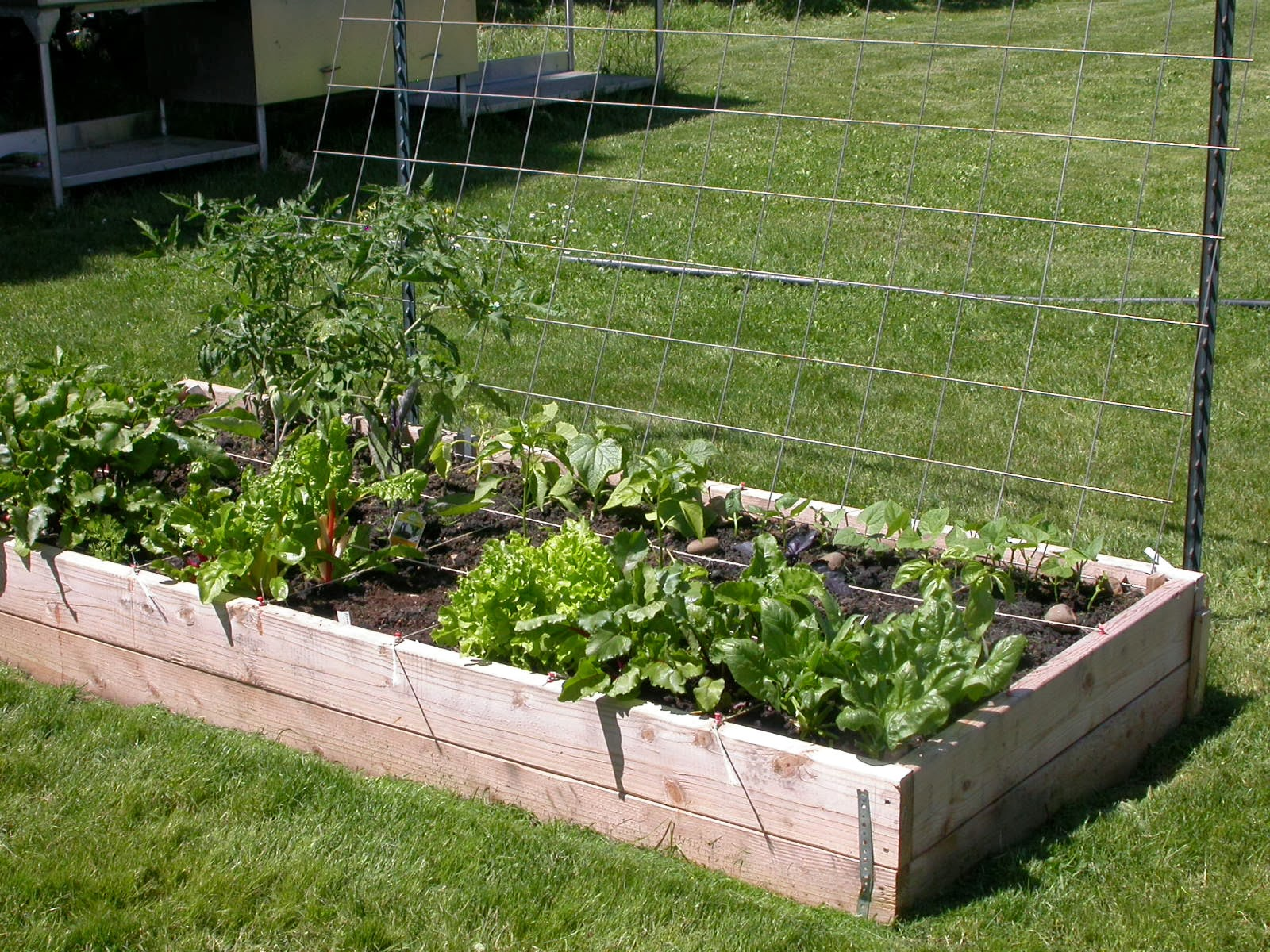 Superior During This Season Of Giving: Six Garden Focused Organizations To Consider