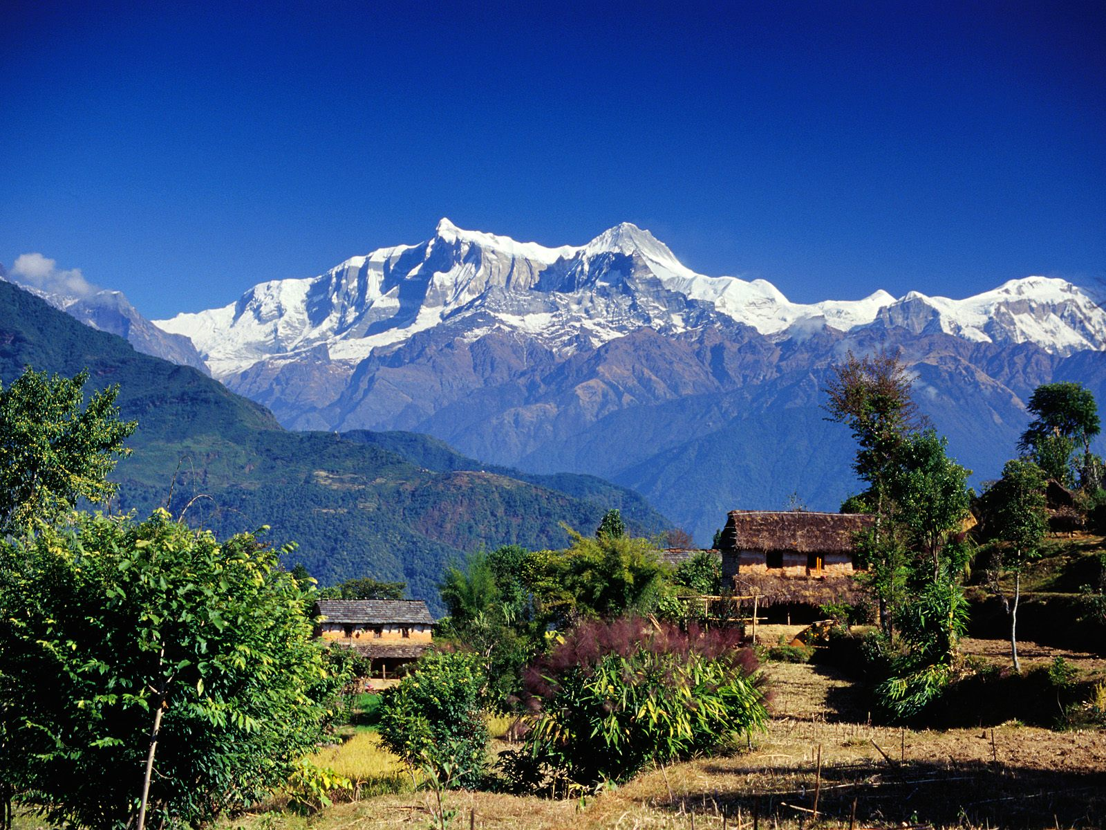 Canvassnap collections of nepalese photography and designs village