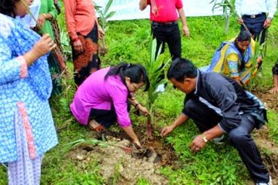 Cardamom plantation awareness camp