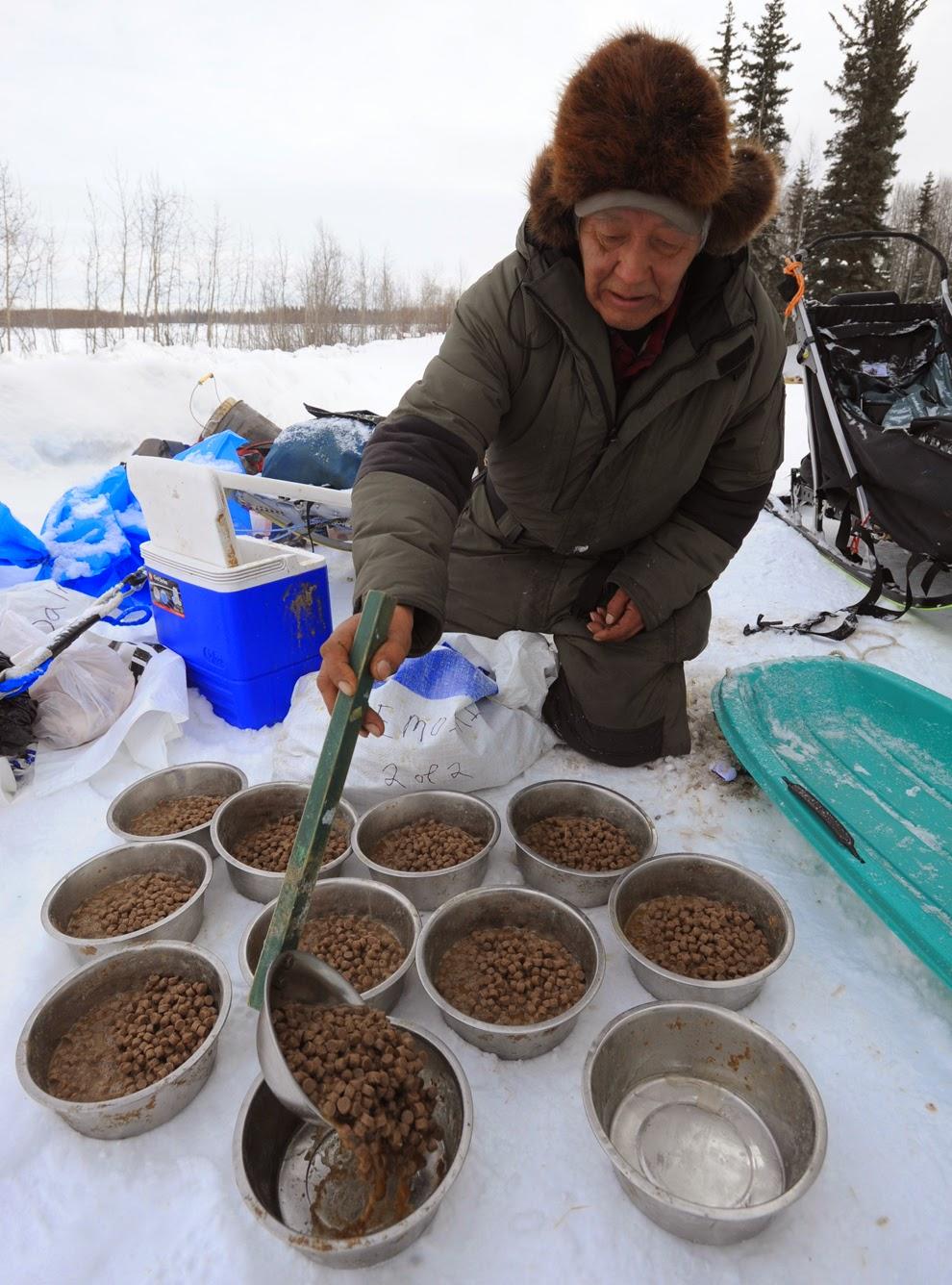 Thức ăn khô cho alaska