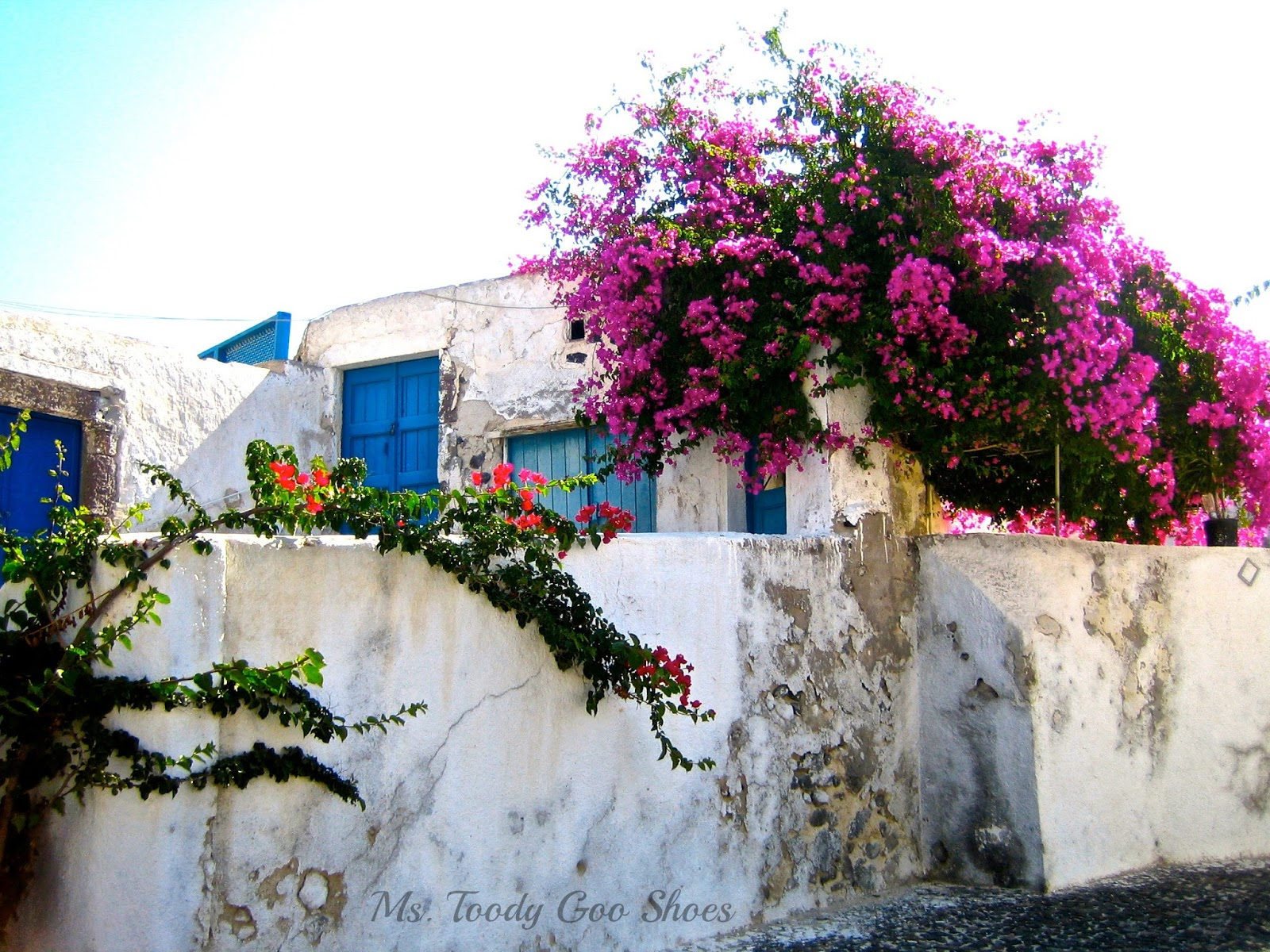 Megalahori...Santorini, Greece  --- Ms. Toody Goo Shoes