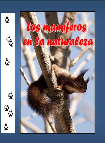 """""""Los mamíferos en la naturaleza"""""""
