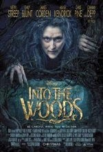 Download Film Into the Woods (2014) Bluray Subtitle Indonesia