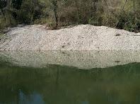Reflexos al riu Llobregat