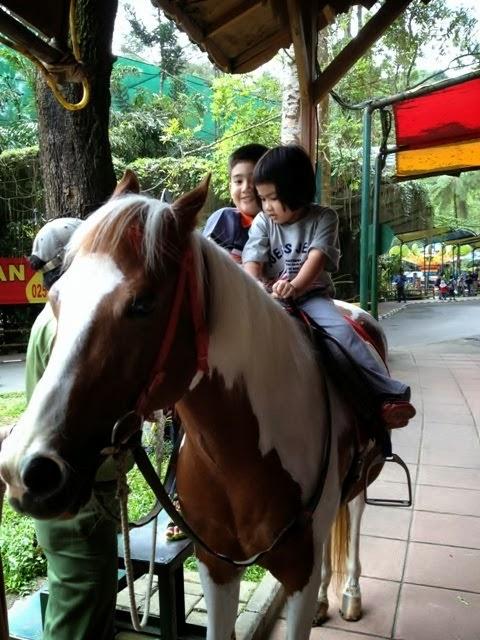 Safari Bogor Jakarta