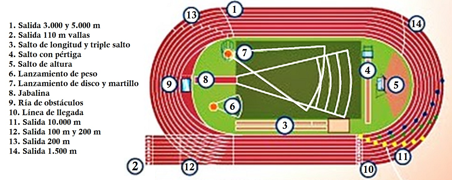 Entrenamiento especial (libre) Pista%2BD%2Batletismo
