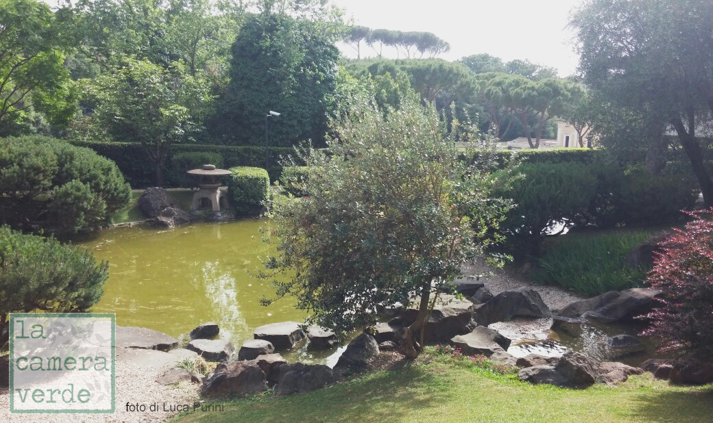 La camera verde un giardino giapponese a roma for Laghetto giapponese
