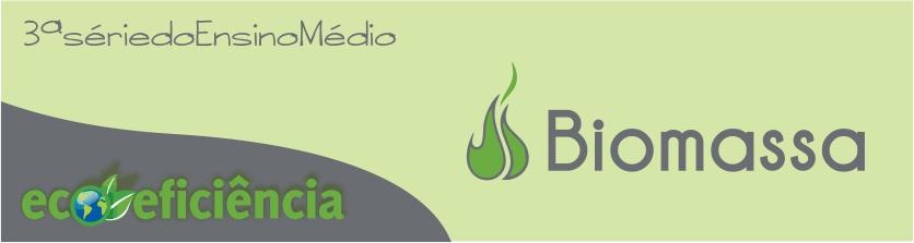Ecoeficiência - Biomassa