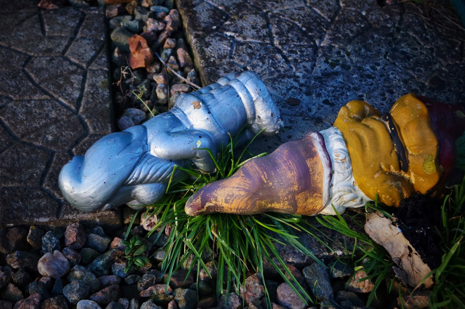 Suicidal gnomes - 'Grow Our Own' Allotment Blog