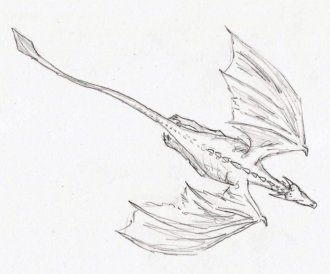 Next Is A Dragon