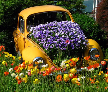 inspiration garden gardening flowers landscaping VolkswagenBeetlegardenplanter flowerbedpinterest2 - again waoow don't weast any thing