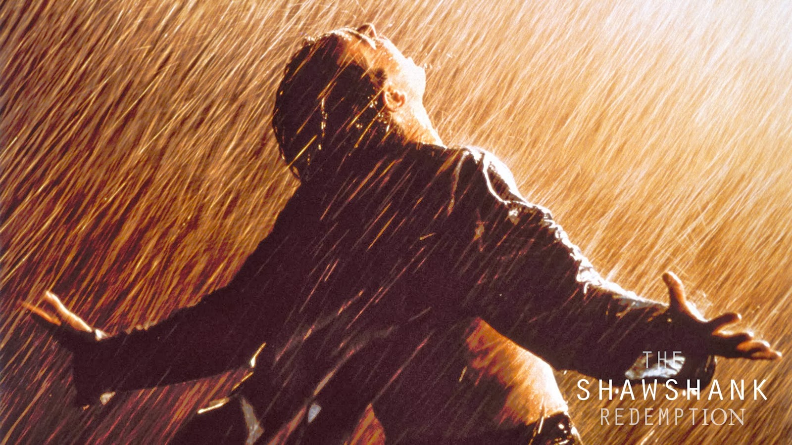 theme of shawshank redemption Start studying shawshank redemption themes: hope learn vocabulary, terms, and more with flashcards, games, and other study tools.
