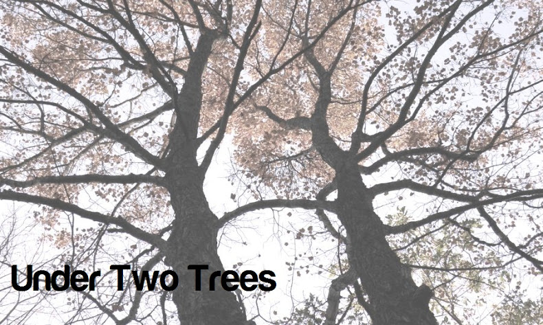 Under Two Trees