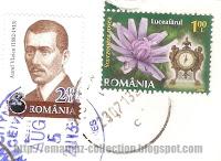 Aurel Vlaicu (1882-1913) & Viper's Grass (Scorzonera rosea)