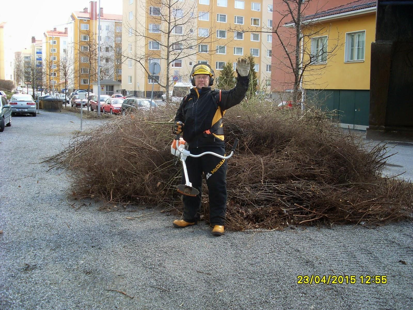 Pihapuiden kaadot, pensasaitojen leikkaukset, alasleikkaukset raivaussahalla Tampere Pirkanmaa