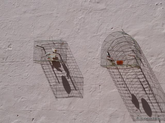 La Havane  - cages à oiseaux