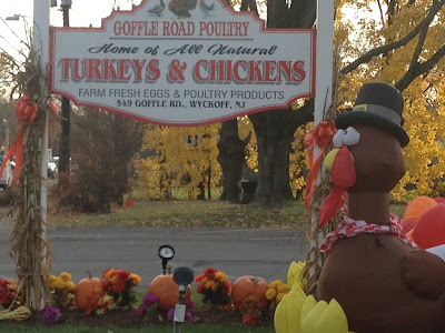 A white sign with red letters spelling out Goffle Road Poultry in Wykoff NJ Fresh Turkeys and Chickens wth a blow up Thanksgiving turkey with a pilgrim hat on.