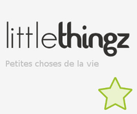 little thingz logo