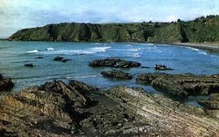 Purema es la última de las playas de Tomé. Limita con el poblado de  Coelemu. Es la única de arena negra be032776415