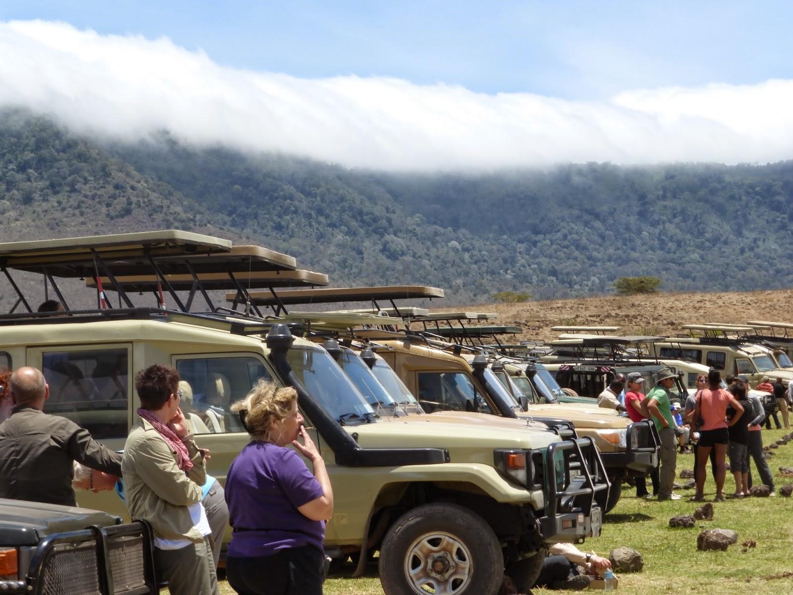 Safari companies in Tanzania