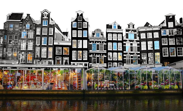 Mercado Flutuante de Flores Amsterdam