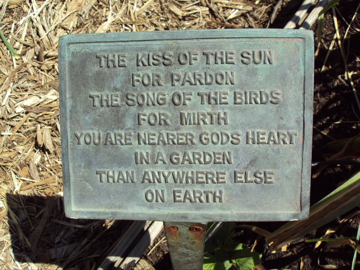 The kiss of the Sun ...