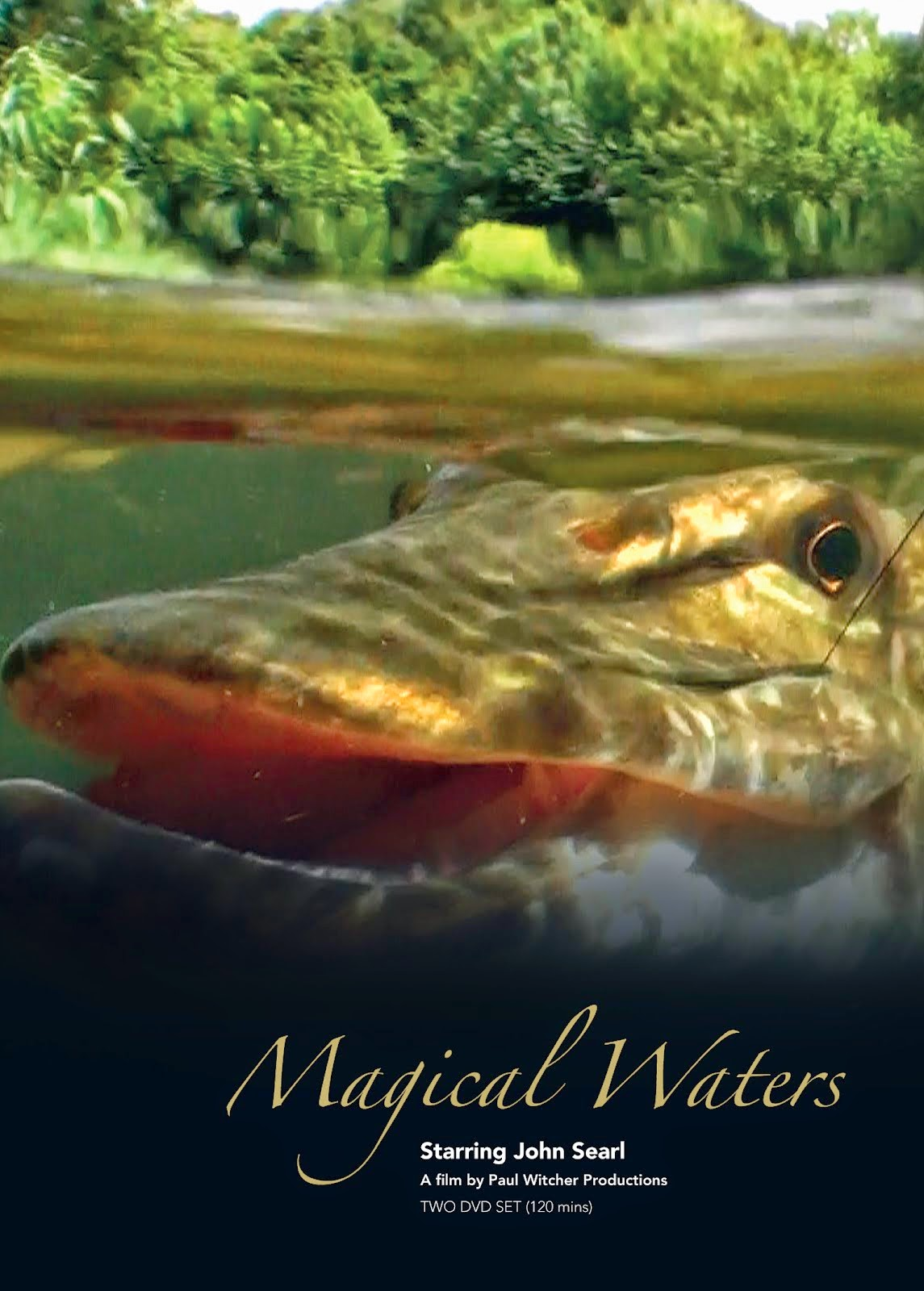 Magical Waters by Paul Witcher