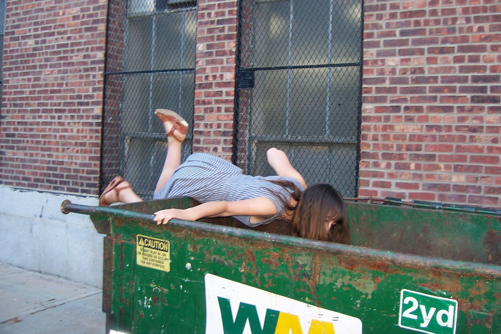 on dumpster diving 2 essay