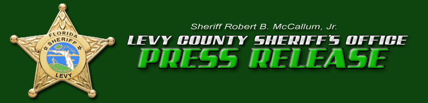 Levy County Sheriff's Star