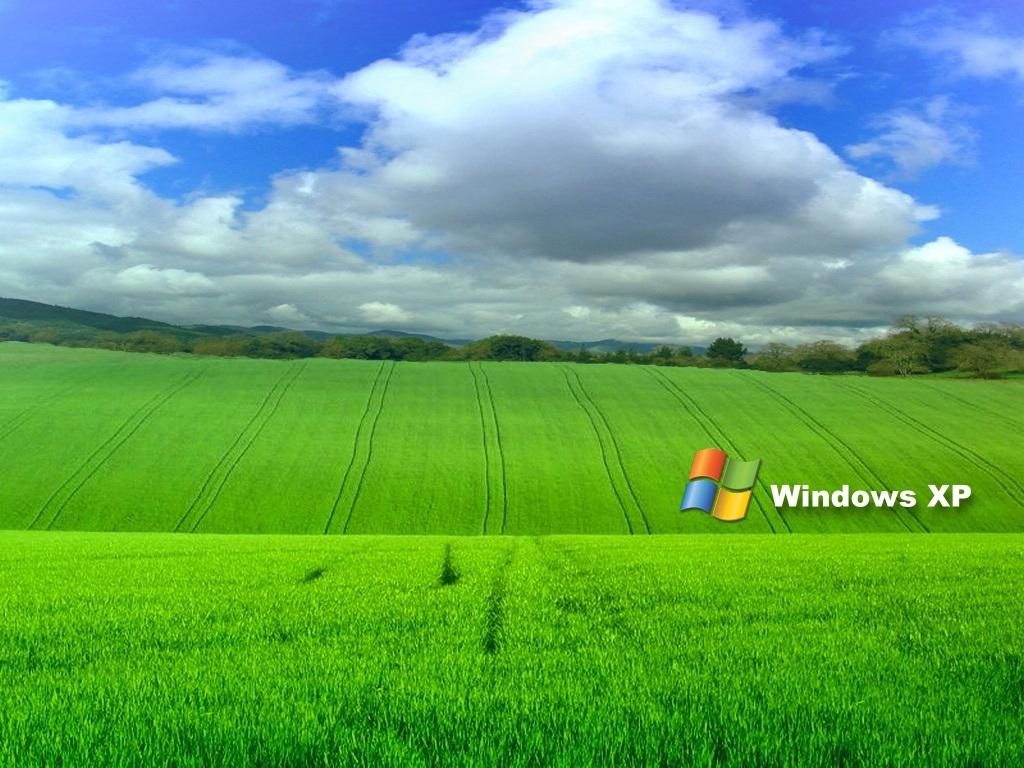 info wallpapers: windows wallpaper xp