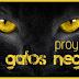 Proyecto: 30 Gatos Negros