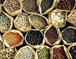Image result for seed saving